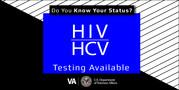 USDVA HIV Logo