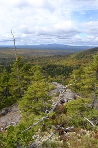 westward view from proposed trail on Little Moose Public Lands showing and expanse of forest with mountains n the distance.