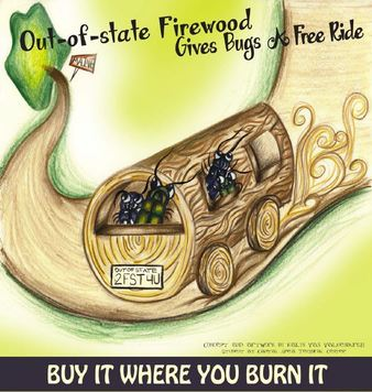 Bug Mobile - Buy it Where You Burn it - Firewood