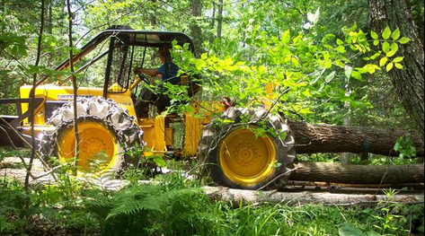 A small cable skidder, with a careful, skilled operator, is still a good option for sustainable harvesting.