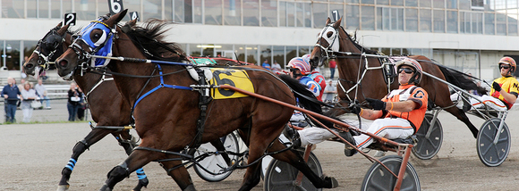 Scarborough Downs Harness Racing