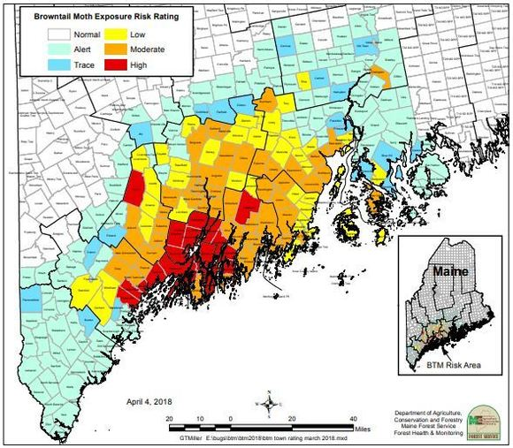 Browntail moth exposure risk map in Maine as of April 4, 2018