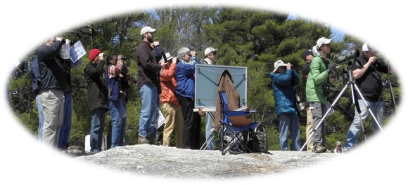 birdwatchers on Bradbury Mountain scanning the sky for raptors during the hawk watch