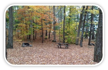 Campsite at Sebago Lake State Park with autumn foliage and lake in background; picnic table and fire ring in foreground.