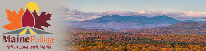 Mainefoliage.com Header