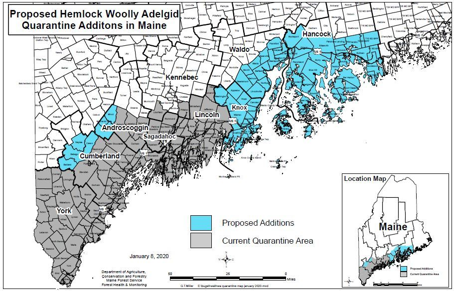 January 2020 Proposed Revisions to Maine's Hemlock Woolly Adelgid Quarantine