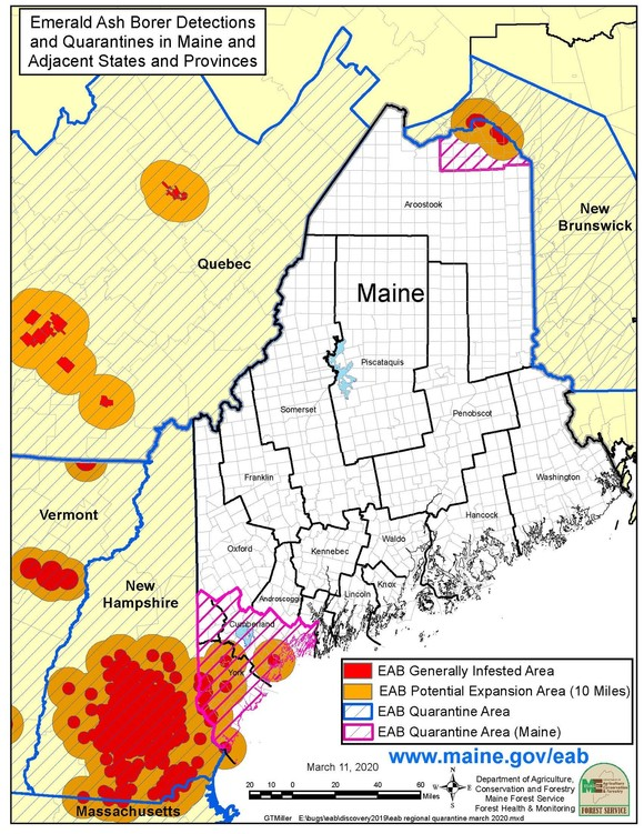 Maine Emerald Ash Borer Quarantine Area March 2020