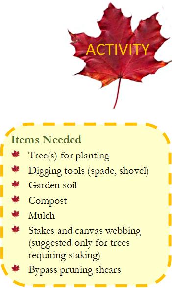 Items Needed to Plant Mast Species
