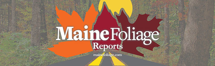 Maine Foliage Weekly Reports