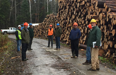 Harvested spruce and fir at Round Pond shown with staff and inspector.