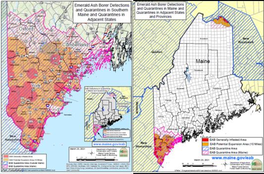 EAB distribution, quaranttine and detection maps