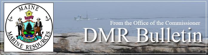 DMR Bulletin