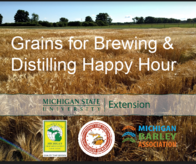 MSU Grains for Brewing and Distilling