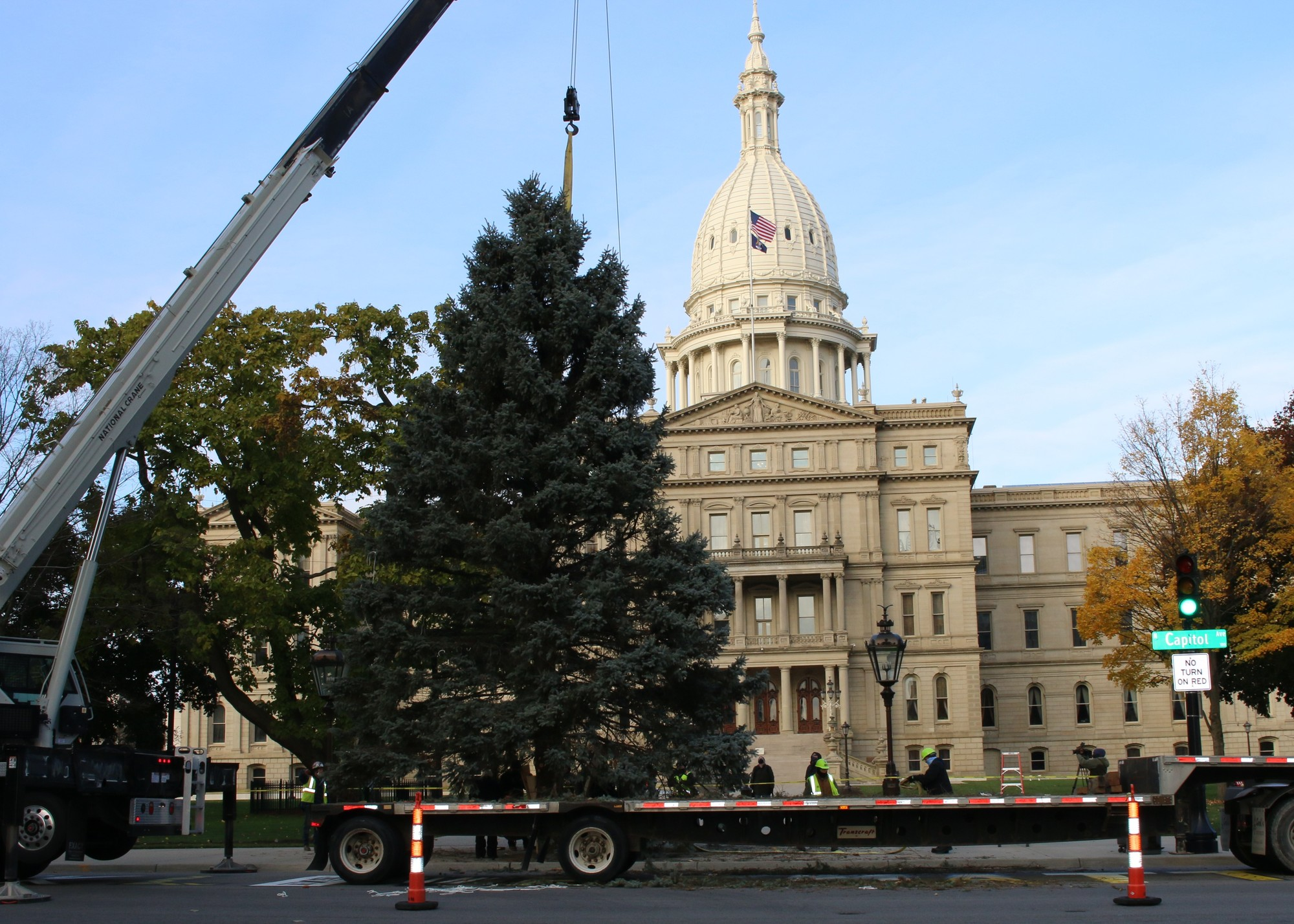 2020 Christmas Tree Delivery 2