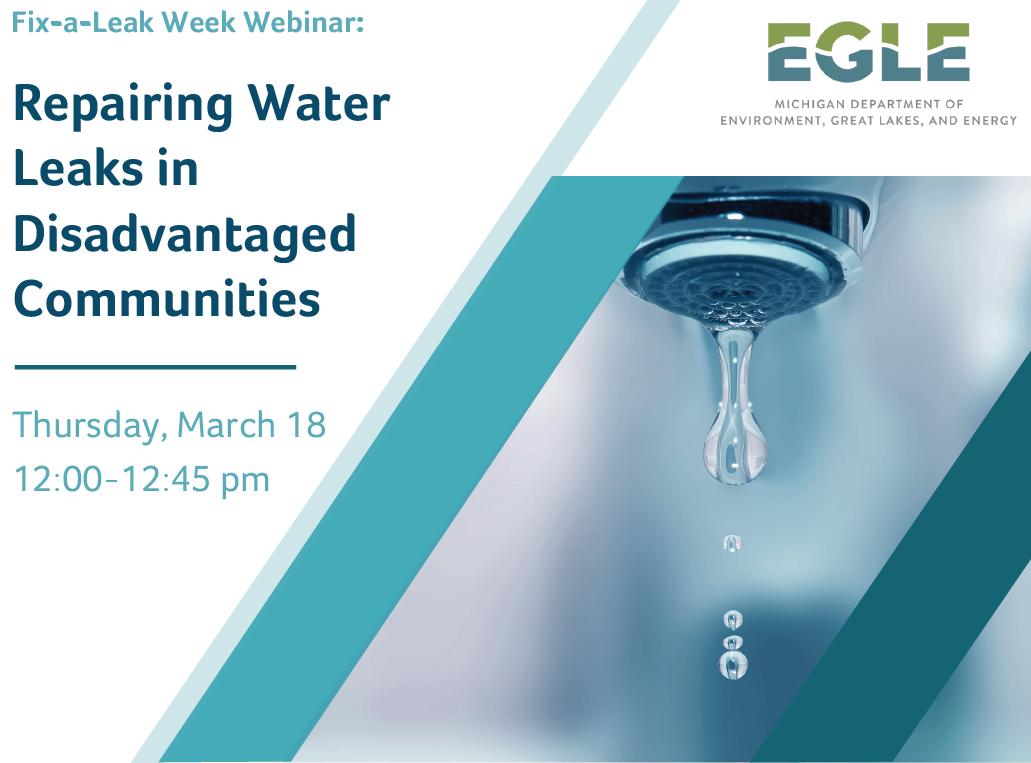 Fix a Leak March 18 webinar banner Repairing Water Leaks in Disadvantaged Communities
