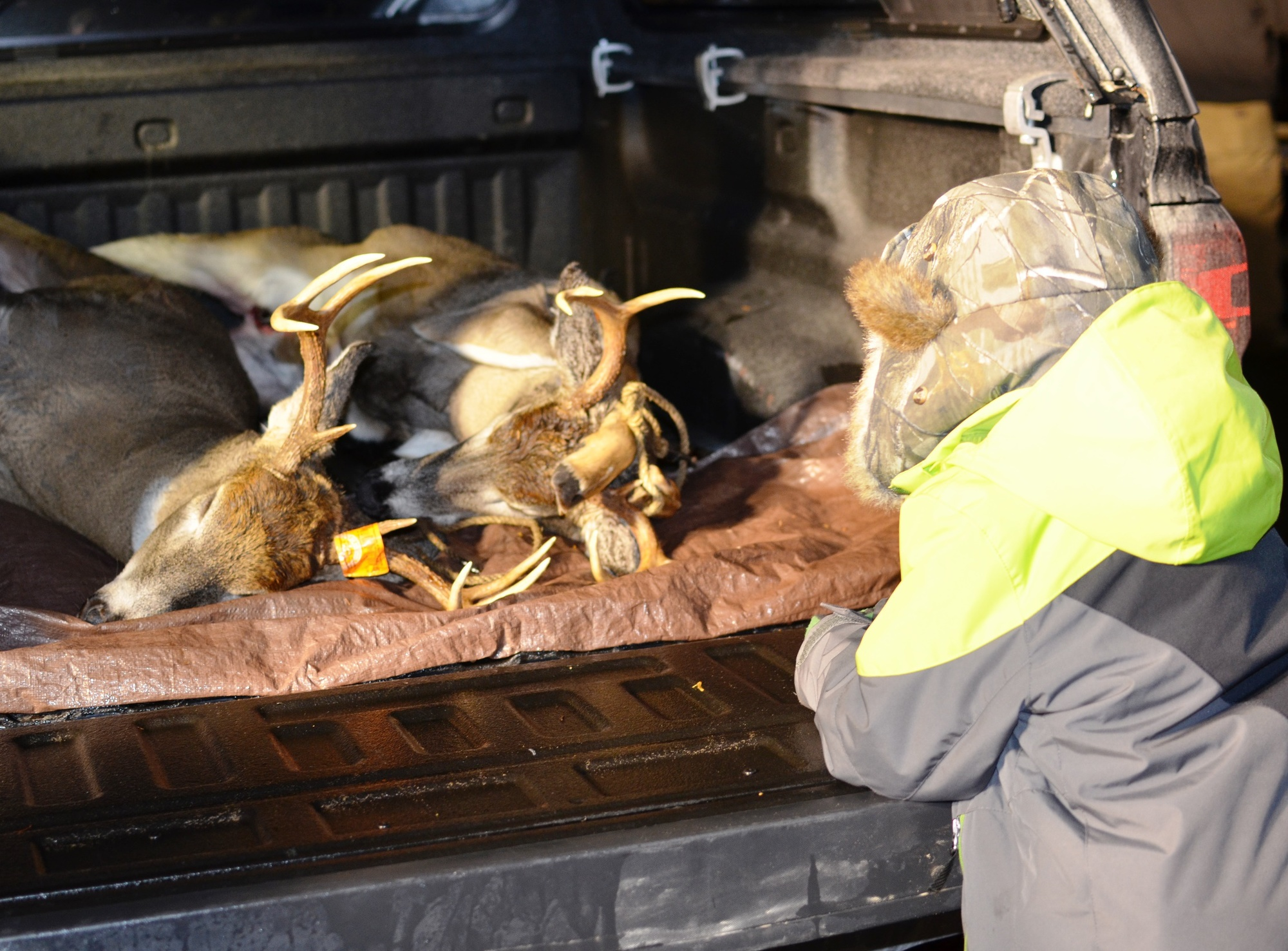 DNR - DNR check station staff hunting valuable deer data