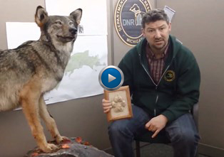 DNR wildlife biologist Kevin Swanson holding paw casts and talking about wolves