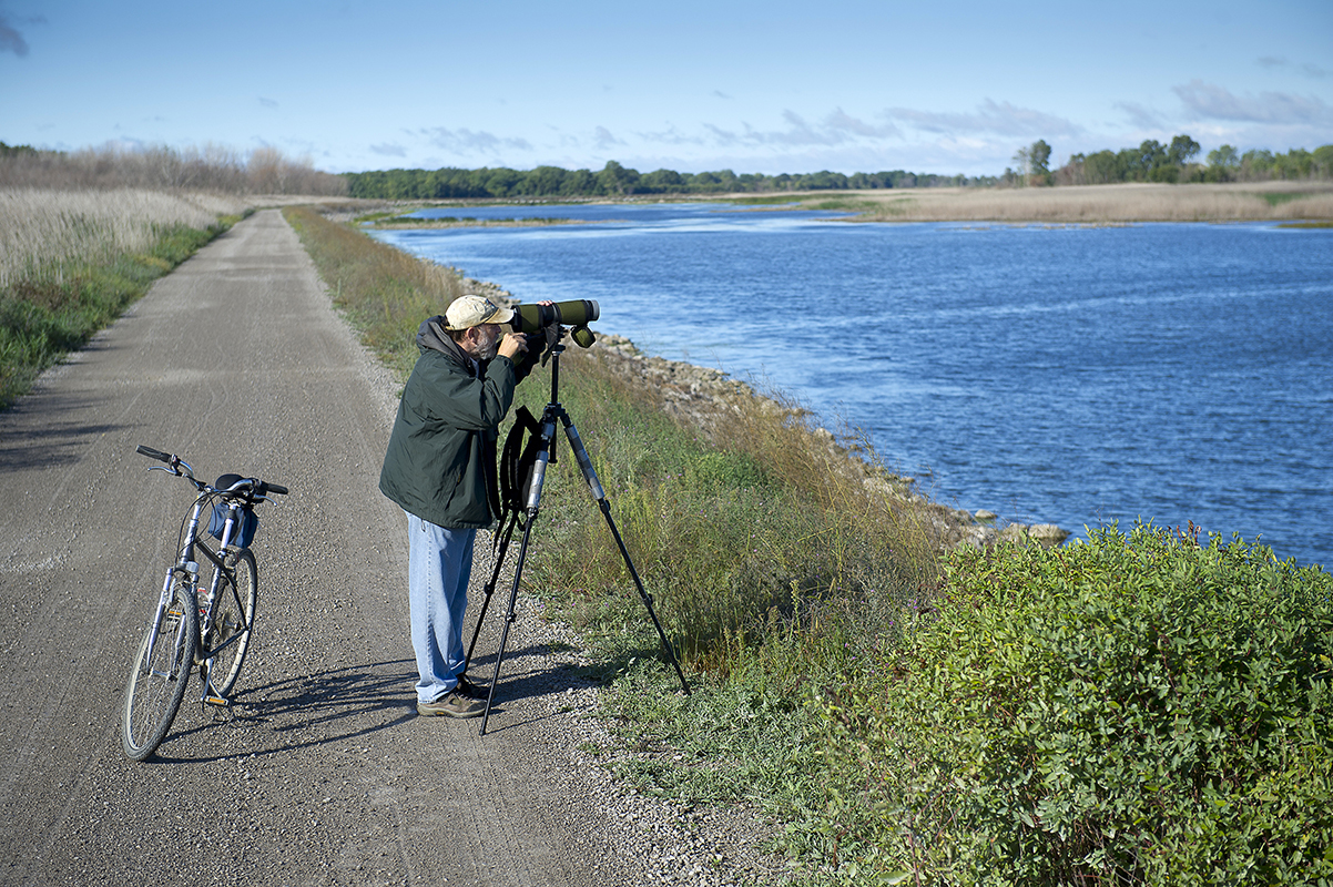 A birdwatcher sets up his spotting scope along a wetlands area.