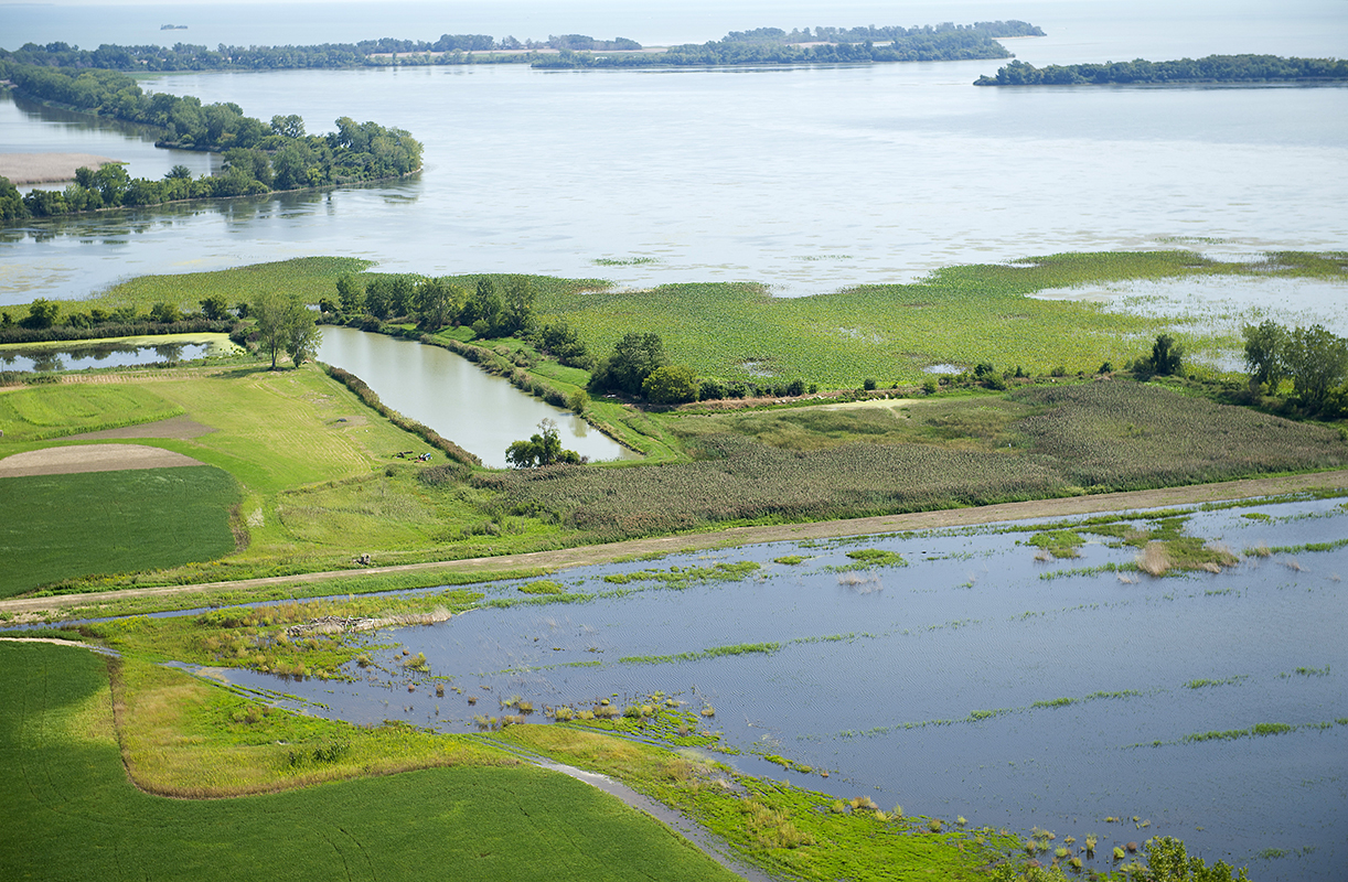 An aerial view of the Pointe Mouillee State Game Area provides some idea of why this place is one of Michigan's Wetland Wonders.