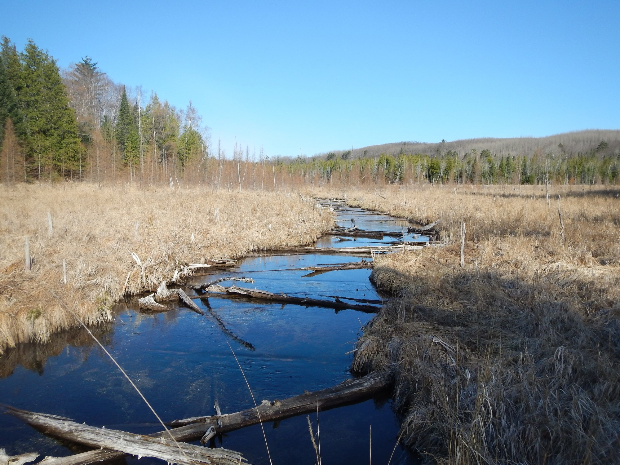 On Klacking Creek in Ogemaw County there is a vast floodplain. As soon as flows get much higher than bankfull here, energy is quickly dissipated.