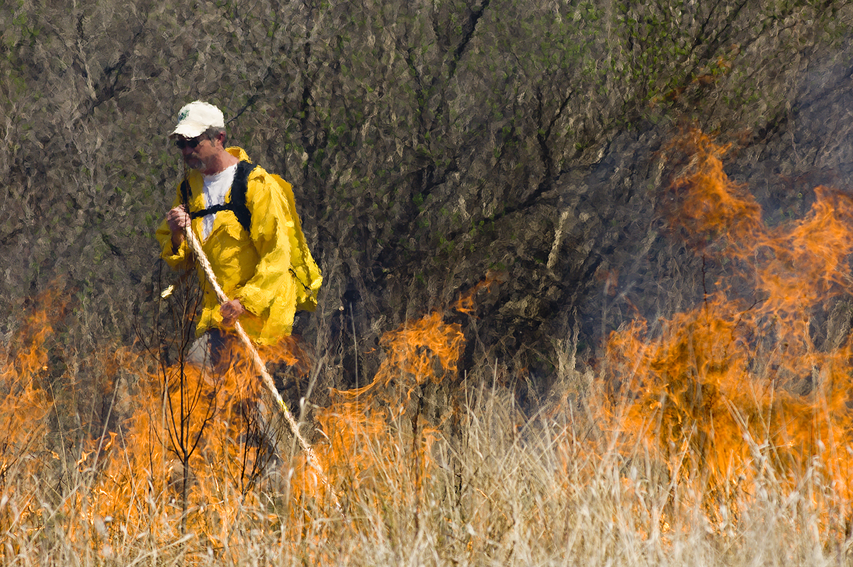 A Michigan Department of Natural Resources firefighter conducts a controlled burn.