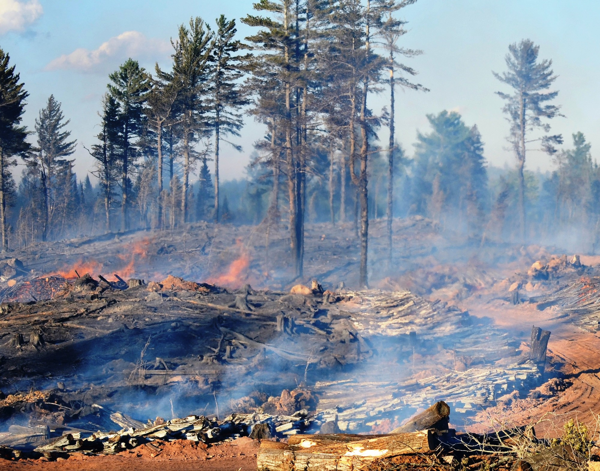 Flames burn up stacked log piles on the County Road 601 Fire in Marquette County in July 2015.