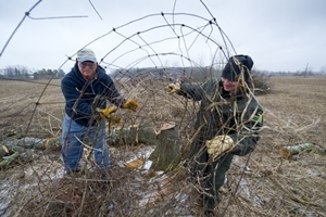 Two men removing a fence row outdoors