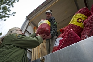 DNR staff loading seed cones onto a truck