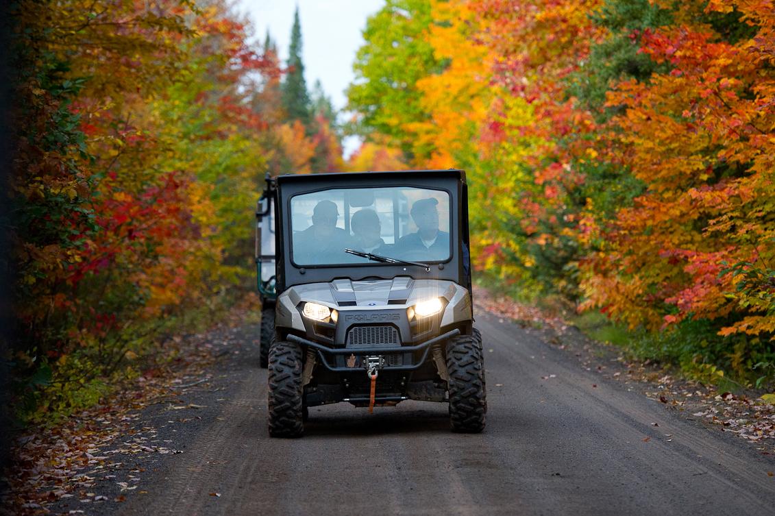 Fall color touring is a popular pastime in Michigan.