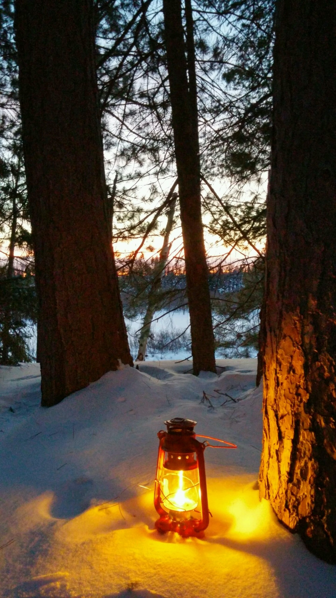A lighted lantern sits along the trail beside the Peshekee River in Marquette County at Van Riper State Park.