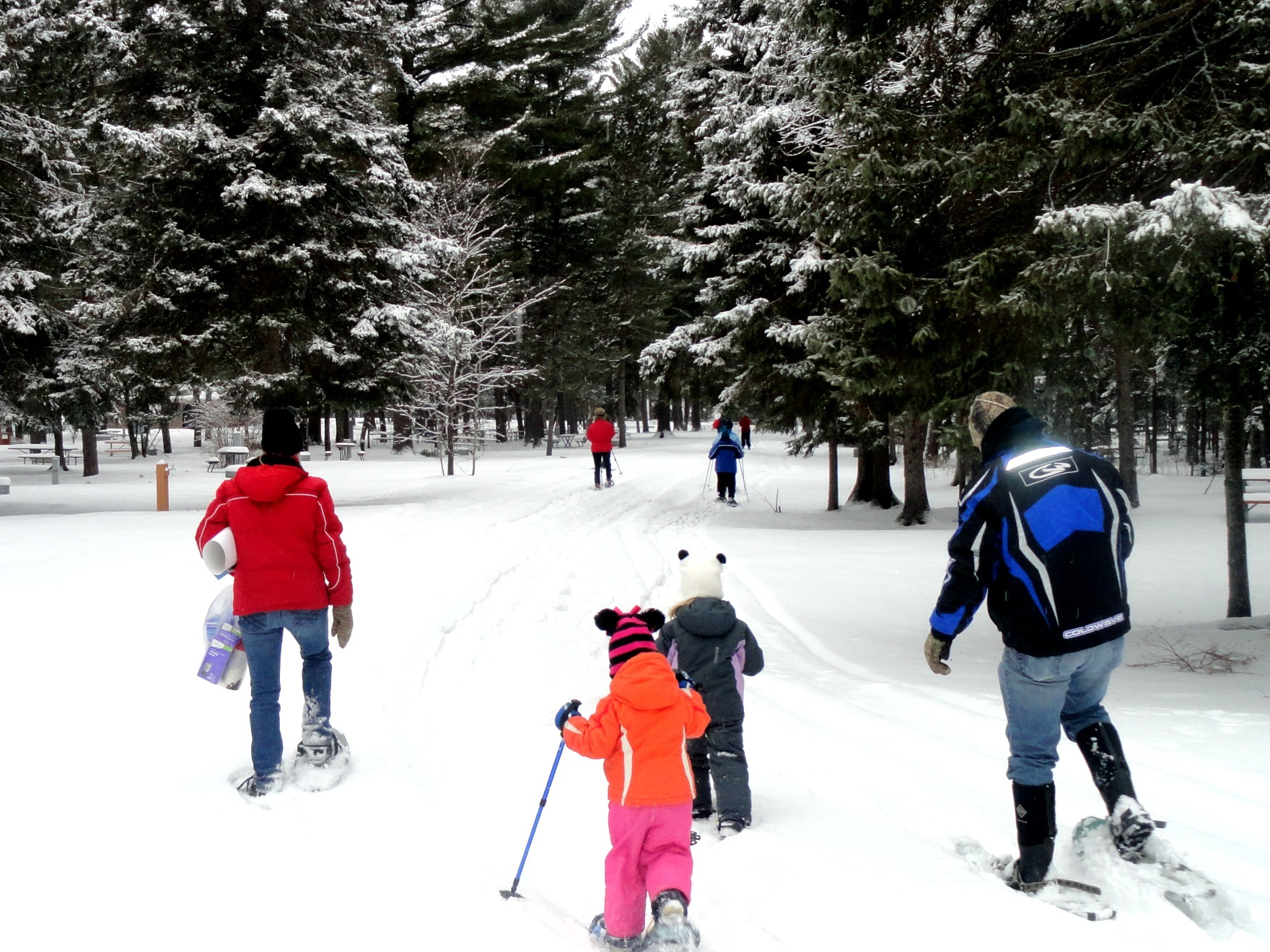 Snowshoe hikers enjoy a trail at Van Riper State Park in Marquette County.