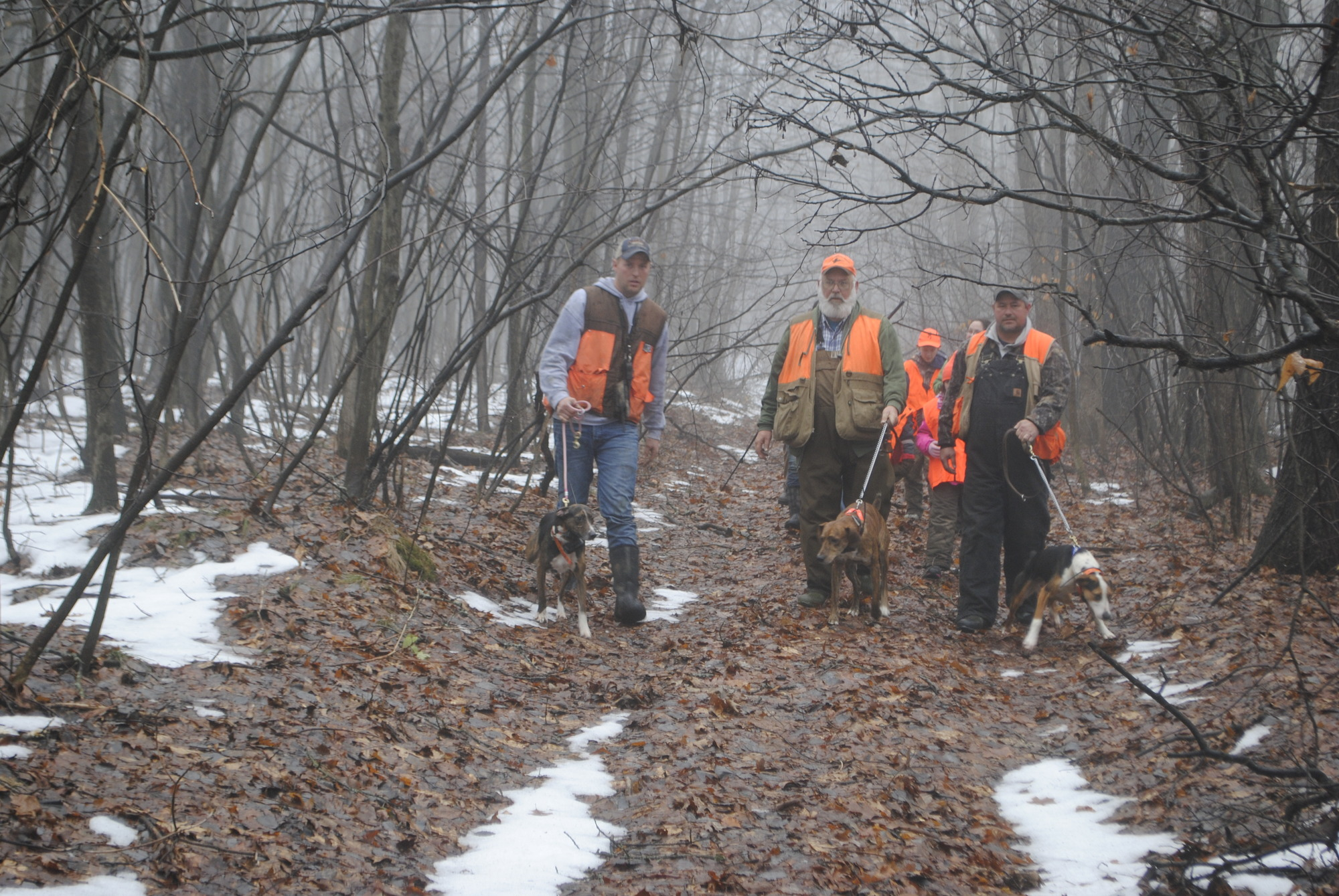 Members of the Michigan Squirrel Dog Association and their dogs lead members of the youth hunt out of the woods.