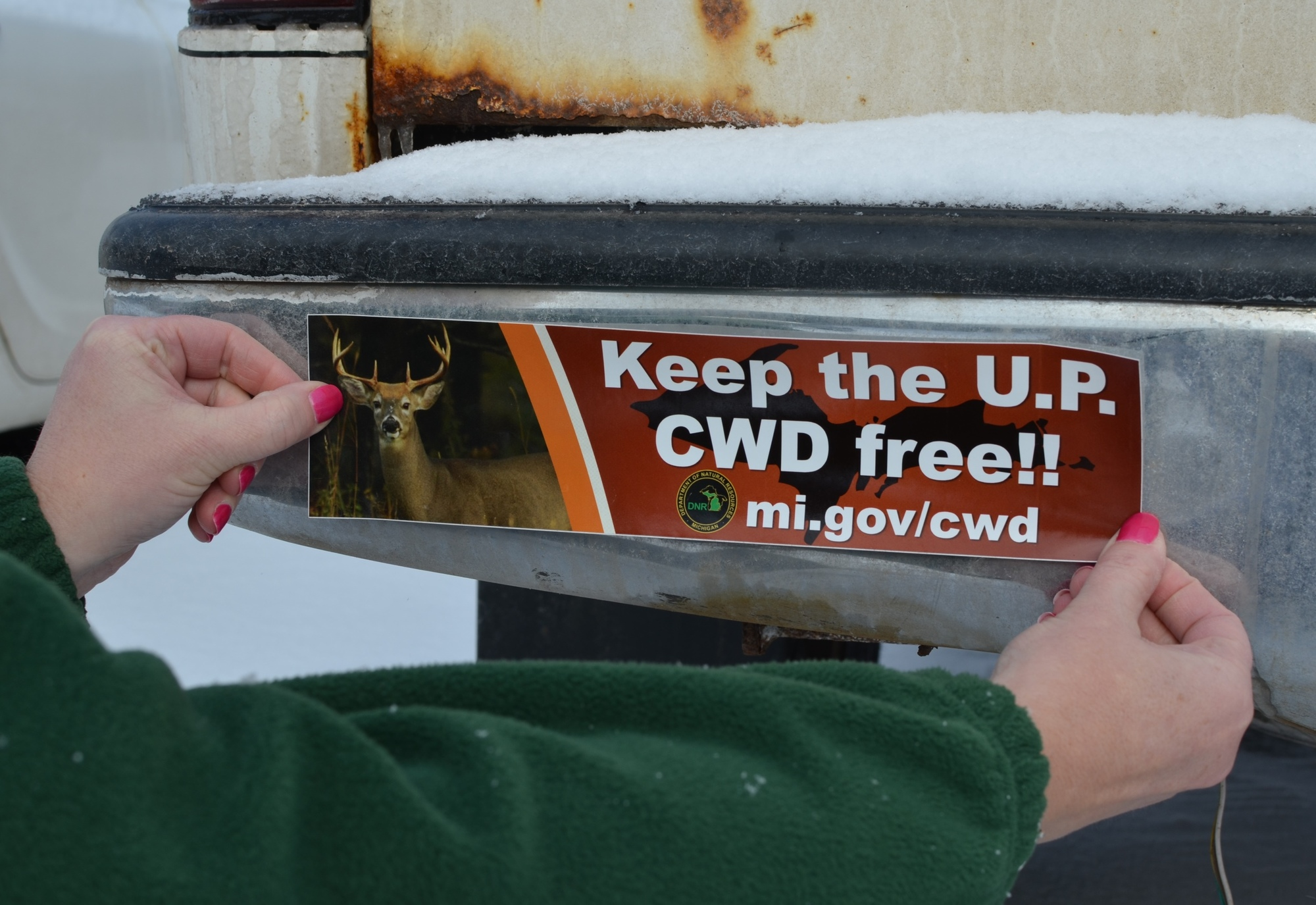 "Bumper stickers were among the education and outreach materials produced by the DNR as part of the ""Keep the U.P. CWD Free"
