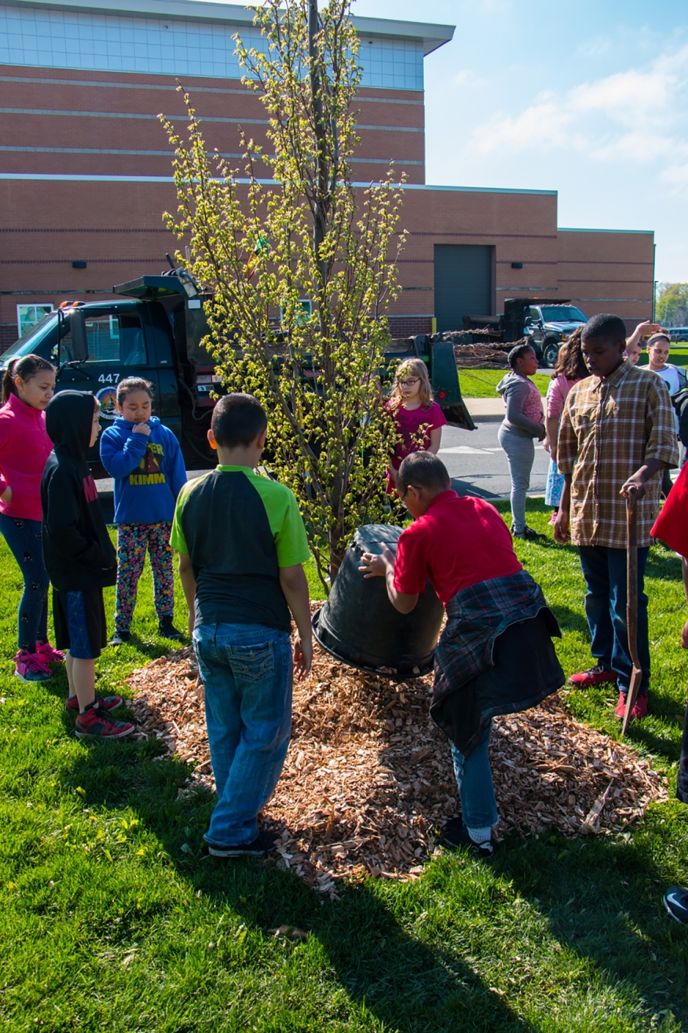 group of kids planting tree outside of school