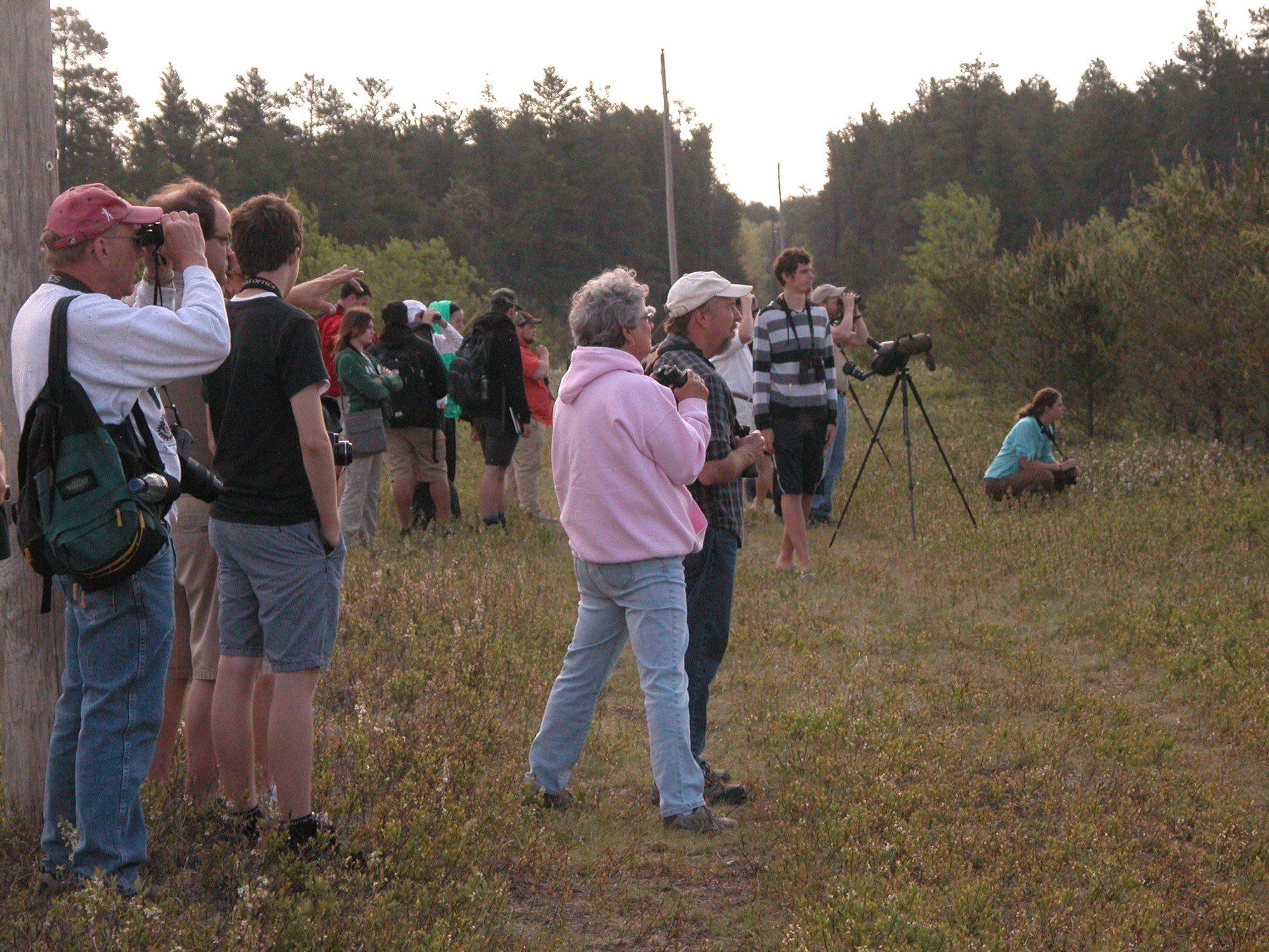 Visitors come from other states, and even other countries, to catch a glimpse of the rare Kirtland's warbler.