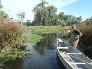 DEQ staffer with boat on water, surveying for invasive plants