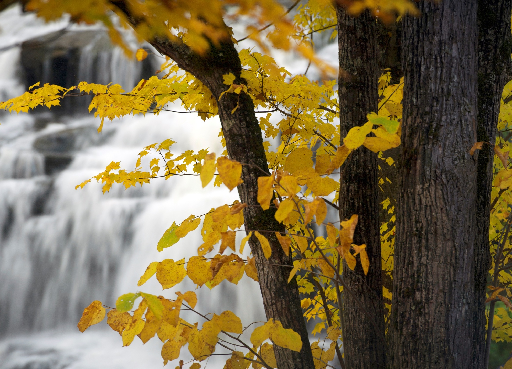 Bond Falls is among the popular destinations in the western Upper Peninsula throughout the year, autumn is no exception.