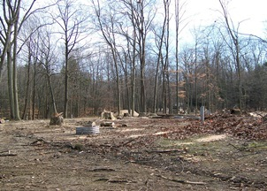 view of a park campground with trees cut and cleared