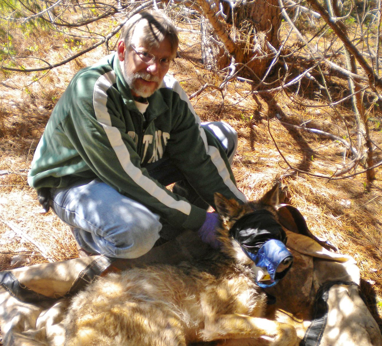 Dean Beyer, a Michigan Department of Natural Resources wildlife research biologist, will discuss Upper Peninsula moose in Ishpeming Oct. 19.