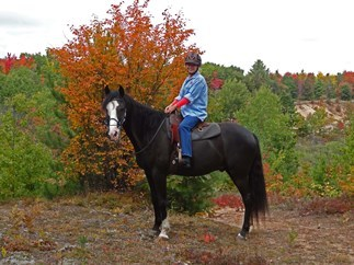 fall view, woman on horse, side view