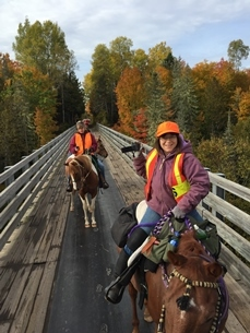 autumn view of horses and riders on bridge
