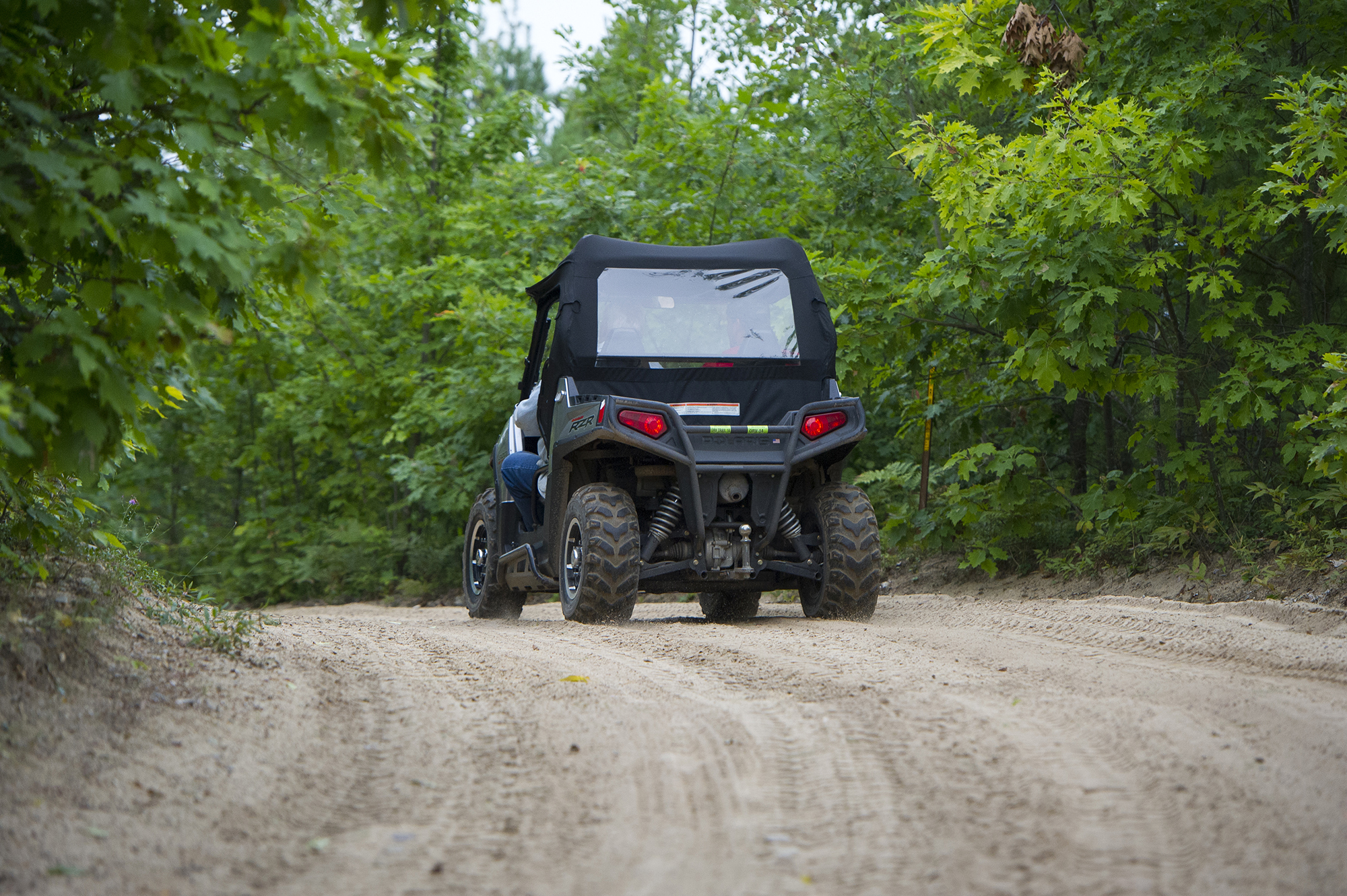 An ORV rider travels down a state forest road.