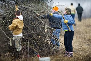 volunteers clear brush to help restore grassland habitat