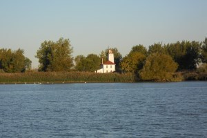 view of lighthouse and trees from across lake