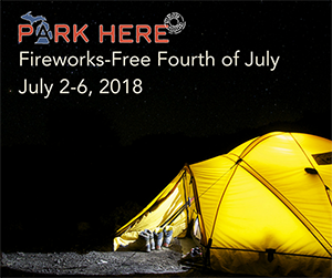 Michigan state parks Fireworks-Free Fourth of July promotion card