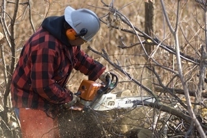With a fuelwood permit, you can gather firewood from state-managed land, in order to help heat your home this winter.
