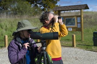 Like the birds they pursue, birdwatchers are attracted to wetland areas where numerous species flourish.