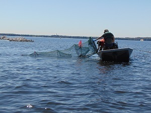 Crews will use netting gear this summer to conduct fish survey work in Pictured Rocks National Lakeshore.