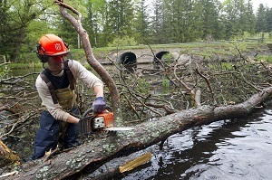 Important habitat work on the Au Sable River, supported by the Aquatic Habitat Grant Program administered by the Michigan DNR