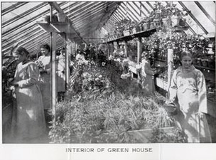 The State Industrial Home for Girls in Adrian put girls to work in various jobs, including working in the school's greenhouses.